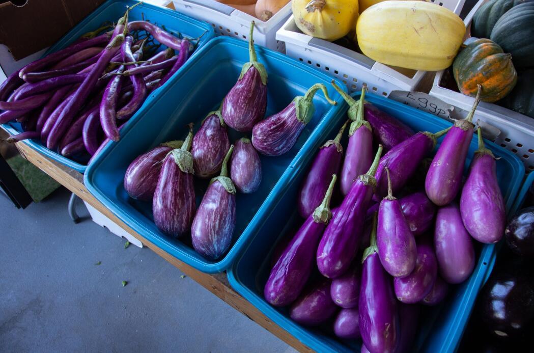 用這4種烹調方法,輕松做出一道少油茄子菜