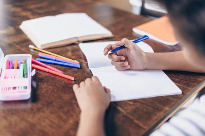 养成整理习惯比早识字重要
