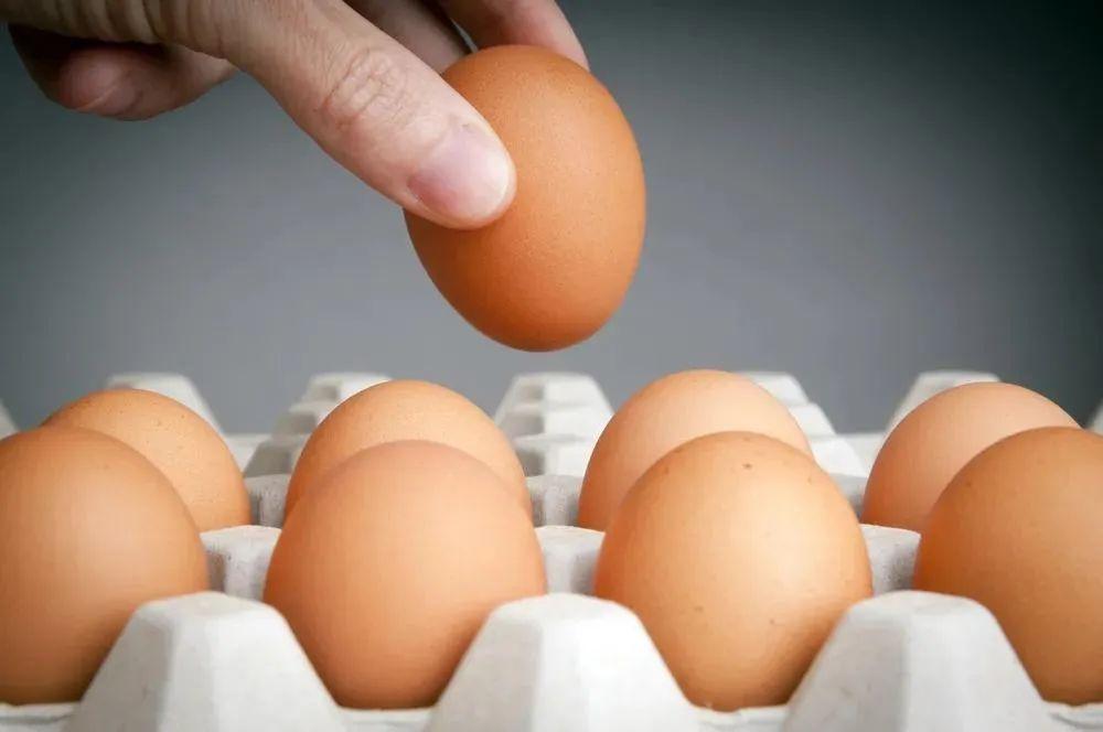"""每天吃掉一顆雞蛋就是攝入一座""""營養寶庫"""",這5類人還可以多吃點"""