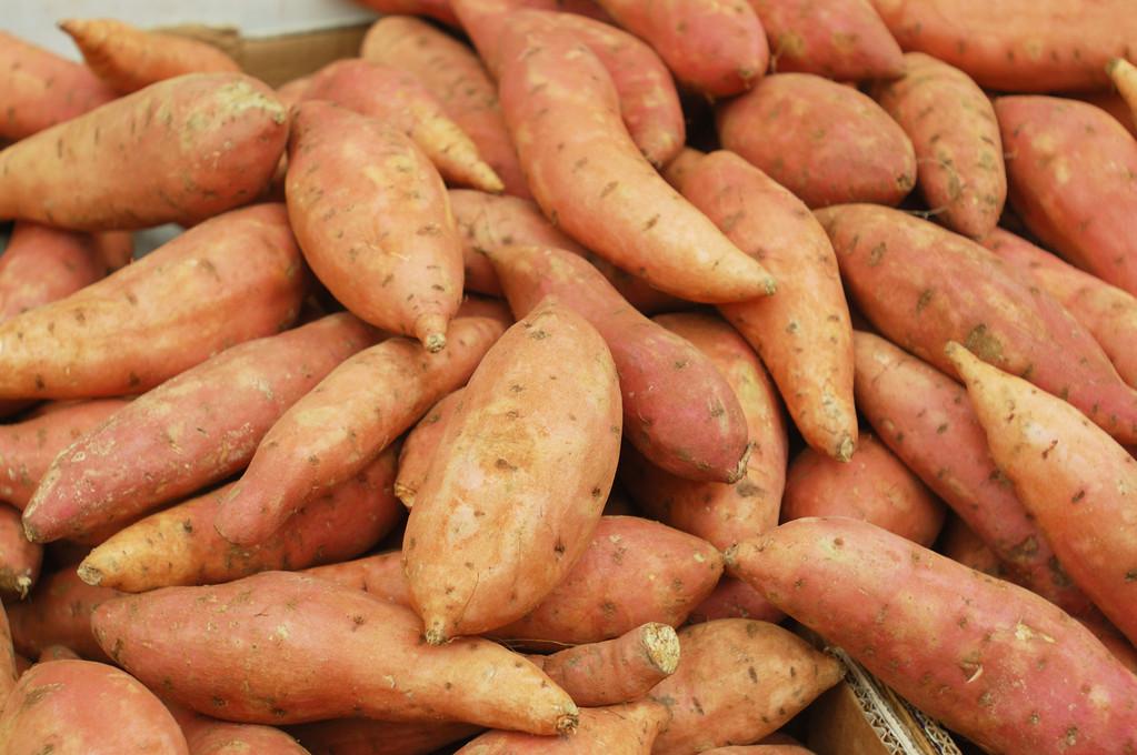 發芽的紅薯還能吃嗎