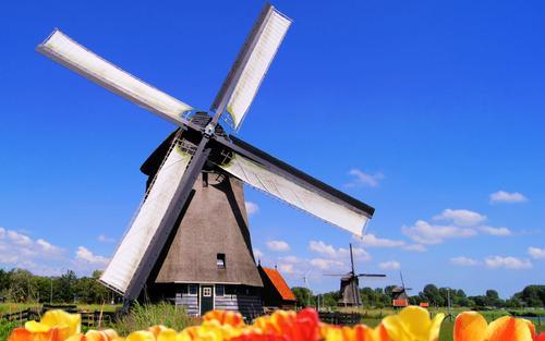 荷兰最健康城市不欢迎汽车