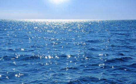 海洋微塑料大多来自衣物