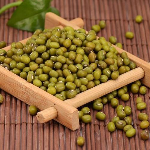 绿豆滑石液去痤疮