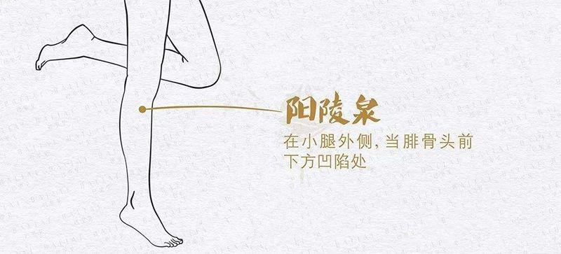 """膽腑疼痛,學會重壓""""陽陵泉穴"""""""