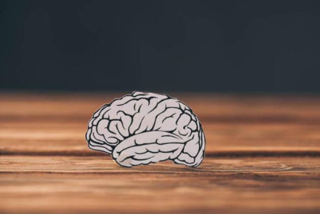 《柳叶刀-老龄健康》杂志:4个方法防痴呆最有效