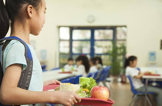 四部门联合发文:健康学校须满足9个条件